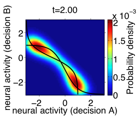 Core Course, computational decision-making lab: simulation of the dynamical evolution of the probability density of outcomes in a circuit of neurons...
